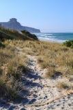 沙子路通过对海滩的沙丘,新西兰 免版税图库摄影
