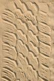 沙子轮胎跟踪 免版税库存照片