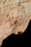 从沙子长凳足迹,锡安国家公园,犹他的斑纹的墙壁 库存图片