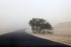 沙尘暴在卡塔尔的沙漠 库存照片