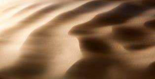 沙尘暴在沙漠 免版税图库摄影