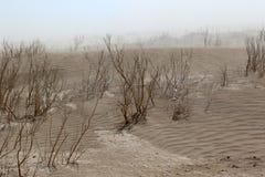 沙尘暴在danakil沙漠在埃塞俄比亚,非洲 图库摄影