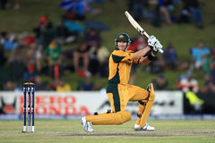 沙恩华森澳大利亚人板球运动员 免版税库存图片