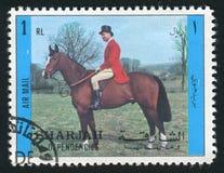 沙扎打印的邮票 免版税库存照片