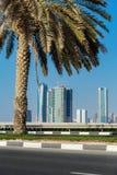 沙扎阿拉伯联合酋长国的全视图 库存图片