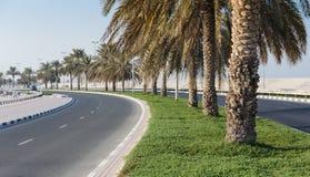 沙扎阿拉伯联合酋长国的江边全视图  图库摄影