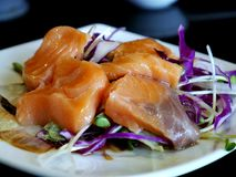 沙拉三文鱼枯萎了 免版税图库摄影