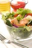 沙拉三文鱼 库存图片