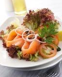 沙拉三文鱼 图库摄影