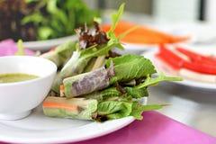 沙拉与色拉调味品的卷菜在白色盘 库存图片