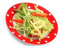 沙拉在牌照的皱叶甘蓝和蕃茄 库存照片
