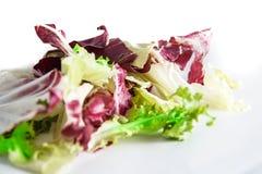 沙拉拉迪基奥和绿色莴苣在白色背景、选择聚焦和和受控制迷离 免版税库存照片