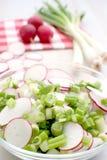 沙拉春天蔬菜 图库摄影