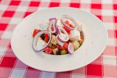 沙拉用希腊白软干酪和葱 免版税库存照片