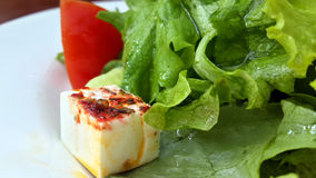 沙拉用希腊白软干酪和香料 免版税库存照片