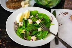 沙拉用新鲜的菠菜离开,乳酪,红洋葱 图库摄影