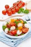 沙拉用无盐干酪、新鲜的草本和五颜六色的西红柿 免版税库存照片