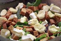 沙拉用油煎方型小面包片和乳酪咸味干乳酪 免版税库存照片
