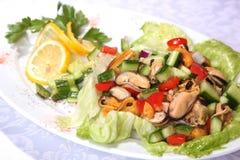 沙拉用海鲜和绿色 库存图片
