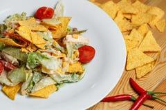 沙拉用玉米、豆、鲕梨和烤干酪辣味玉米片 免版税图库摄影