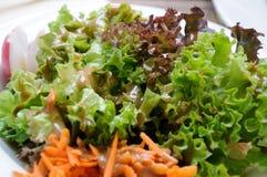 沙拉用红色和绿色莴苣 库存图片