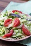沙拉用蕃茄,圆白菜,黄瓜 库存照片