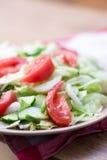 沙拉用蕃茄,圆白菜,黄瓜 免版税图库摄影