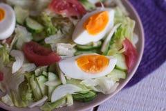 沙拉用蕃茄,鸡蛋,黄瓜 免版税库存图片