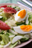 沙拉用蕃茄,鸡蛋,黄瓜 图库摄影