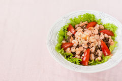 沙拉用虾、蕃茄和扁豆 免版税库存照片