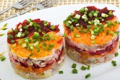 沙拉用鲱鱼和菜 免版税图库摄影