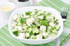 沙拉用黄瓜、豆腐、香葱和芝麻籽,水平 免版税库存图片