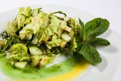 沙拉用黄瓜和三文鱼 免版税图库摄影