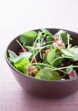 沙拉用莴苣、石榴和核桃 免版税库存照片