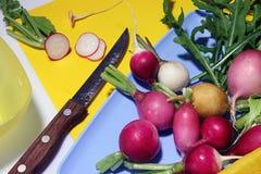 沙拉的萝卜 免版税图库摄影