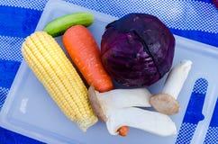 沙拉的,食物的野营新鲜蔬菜 免版税库存图片