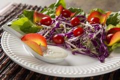 沙拉盘用葡萄蕃茄、莴苣和红叶卷心菜和sauc 免版税库存图片