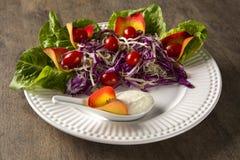 沙拉盘用葡萄蕃茄、莴苣和红叶卷心菜和sauc 库存图片