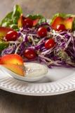沙拉盘用葡萄蕃茄、莴苣和红叶卷心菜和sauc 免版税库存照片