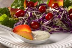 沙拉盘用葡萄蕃茄、莴苣和红叶卷心菜和sauc 库存照片