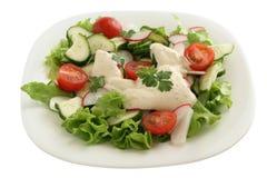 沙拉调味汁蔬菜 免版税库存照片