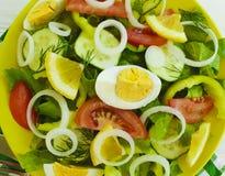 沙拉,黄瓜,鸡蛋,蕃茄,在白色木背景的维生素自创开胃菜开胃菜葱 库存图片