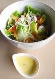 沙拉绿色用山羊乳干酪 库存图片