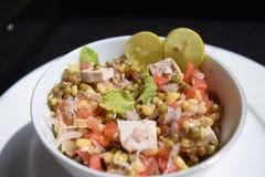 沙拉绿豆新芽、石灰、豆腐、葱和蕃茄 库存照片