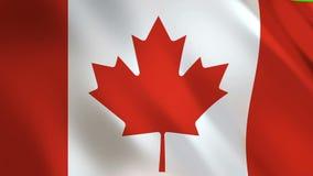 沙文主义情绪的加拿大 皇族释放例证