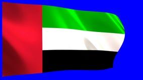 沙文主义情绪的阿联酋 皇族释放例证