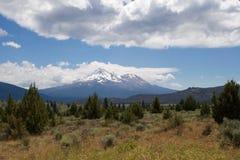 沙斯塔山,有snowcap的 免版税图库摄影