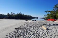 沙滩、红色帐篷和海岛早晨太阳的,中央海岸BC 库存照片