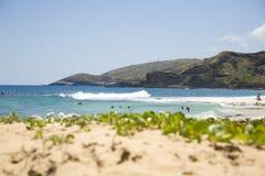 沙滩 免版税图库摄影