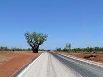 沙漠。澳大利亚。猴面包树。 库存图片